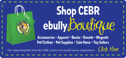 Online Home of Chicago English Bulldog Rescue